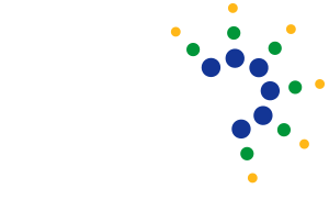 The Houston Consulting Group